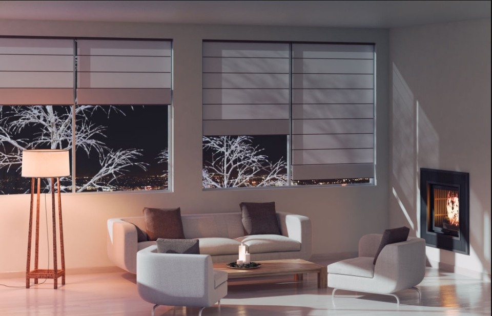 Which Blinds Are Best for Living Room?